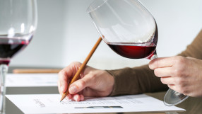 Sommelier evaluating red wine.