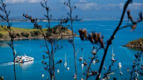 Matiatia Bay