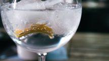 Gin Tonic in a bar