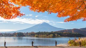 Autumn Leaves at Fuji Kawaguchiko: Credit - Asia Miles
