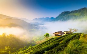 Chaing Mai scenery